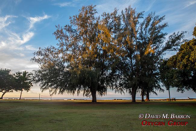 Wiamea Plantation