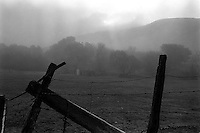 fence, fog, Who knows? 1987  &amp;#xA;<br />