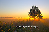 63893-02904 Sunrise at Prairie Ridge State Natural Area, Marion Co, IL
