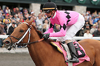 Make a Fortune and Corey Lanerie win the 6th race, Maiden $50,000 for colts 3 and up.  October 20, 2012.