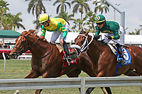 HALLANDALE BEACH, FL - March 31:   #1 Therapist with jockey Irad Ortiz Jr on board, wins the Cutler Bay Stakes at Gulfstream Park on March 31, 2018 in Hallandale Beach, Florida. (Photo by Liz Lamont/Eclipse Sportswire/Getty Images)