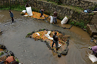 RWANDA, Musanze, Ruhengeri, village Busogo, people wash carrots before selling them on the market in dirty river in Virunga region, it looks like the map of africa / RUANDA, Mohrruebenwaesche in einem schmutzigen Bach, Form des Kontinent Afrikas