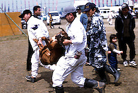A Tosa is rushed to a vet at the end of the dog fighting in Nagasaki, Japan. A few dogs die during each tornoment.  this dog had a heart attack and barely survived..