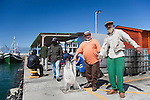 Fishermen, Kalk Bay harbour, Western Cape, South Africa