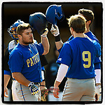 Josh Brammell (24) of the Patrick Henry Patriots is congratulated after hitting a home run in Game 1 of a junior college season-opening doubleheader against the Spartanburg Methodist College Pioneers on February 3, 2018, at Mooneyham Field in Spartanburg, South Carolina. (Tom Priddy/Four Seam Images)