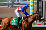 DEL MAR, CA  SEPTEMBER 1:  #5 Bellafina, ridden by Flavien Prat, wins the Del Mar Debutante (Grade 1) impressively on September 1, 2018, at Del Mar Thoroughbred Club in Del Mar, CA.(Photo by Casey Phillips/Eclipse Sportswire/Getty ImagesGetty Images