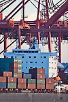 Container ship, cranes, Seattle, Port of Seattle, Elliott Bay, Pacific Northwest, maritime trade, Pacific Rim imports,