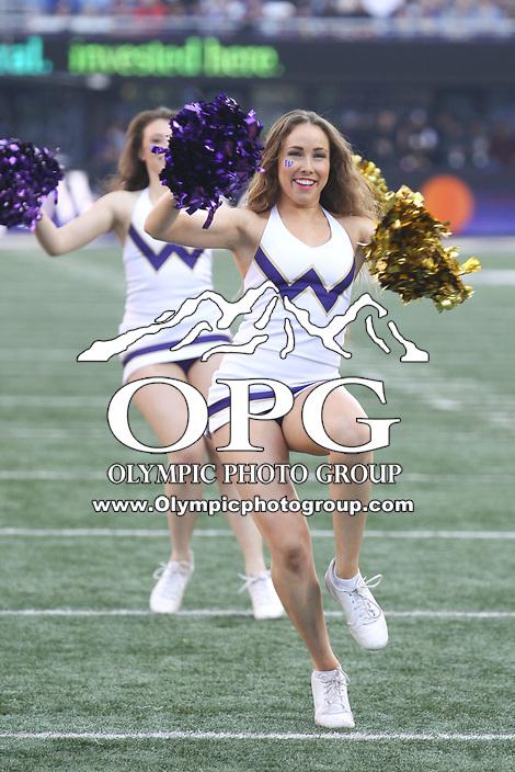 SEATTLE, WA - OCTOBER 28:  Washington cheerleader Megan Dolan entertained fans during the game against UCLA on October 28, 2017 at Husky Stadium in Seattle, WA. Washington won 44-23 over UCLA.