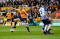 7th March 2020; Molineux Stadium, Wolverhampton, West Midlands, England; English Premier League, Wolverhampton Wanderers versus Brighton and Hove Albion; Diogo Jota of Wolverhampton Wanderers controls the ball in the box