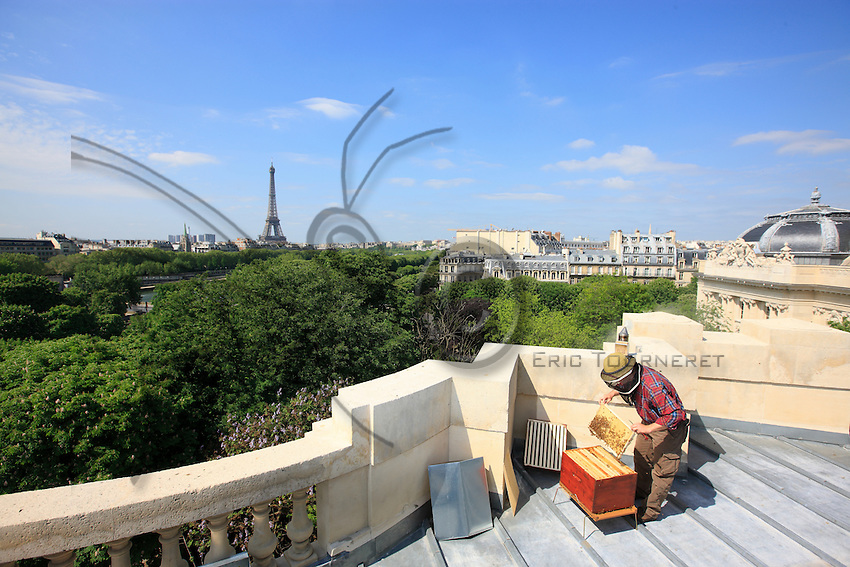 The installation of the first hive on the roof of the Grand Palais.