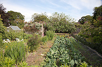 The walled kitchen garden is planted with cabbage and other vegetables