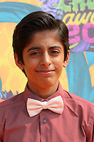 Karan Brar<br />
