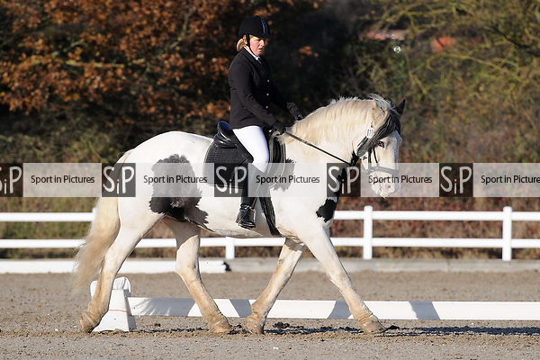 Stapleford Abbotts. United Kingdom. 30 November 2019. Class 6. Unaffiliated dressage. Brook Farm training centre. Stapleford Abbotts. Essex. UK. Credit Ellen Szalai/Sport in Pictures.~ 30/11/2019.  MANDATORY Credit Ellen Szalai/SIP photo agency - NO UNAUTHORISED USE - 07837 394578