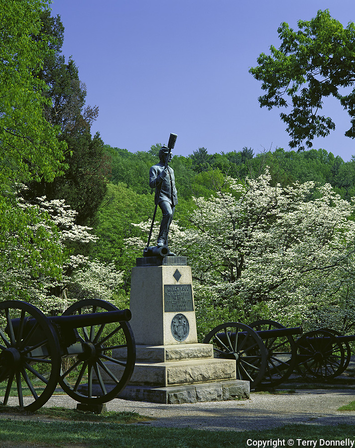Gettysburg National Military Park, PA<br /> Cannon and NY artillery monument in spring woods in Devel's Den