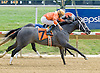 Spanish Blues winning at Delaware Park on 9/17/12