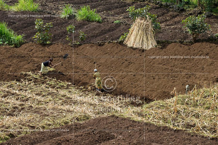 RWANDA, Ruhengeri, small scale farming, women work with hoe on their farm, small land patches make a income hard / RUANDA, Ruhengeri, kleinparzellige Landwirtschaft, trotz fruchtbarer Boeden in der Vulkanlandschaft sind die Ertraege gering