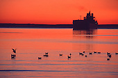 The M/V Wolverine at dawn in Marquette, Michigan's upper harbor.