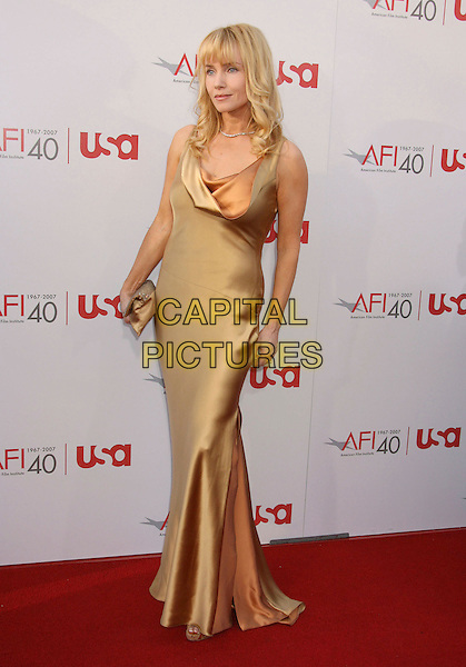 REBECCA DeMORNAY.35th AFI Life Achievement Award Honoring Al Pacino held at the Kodak Theatre, Hollywood, California, USA..June 7th, 2007.full dress length gold satin neck cowl .CAP/ADM/RE.©Russ Elliot/AdMedia/Capital Pictures