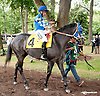 Stormin Wendy before The First State Dash at Delaware Park on 9/14/13
