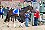 HOT SPRINGS, AR - APRIL 14: Oaklawn Handicap. Oaklawn Park on April 14, 2018 in Hot Springs,Arkansas.#6 Colonelsdarktemper (Photo by Ted McClenning/Eclipse Sportswire/Getty Images)