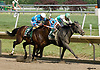 Smart Growth winning The Brandywine Stakes at Delaware Park on 6/10/06