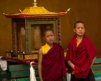 Buddhist monks preparing the palanquin for the Losar procession, Sikkim, India