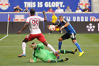 New York Red Bulls vs San Jose Earthquakes, July 19, 2014