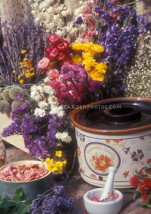 Rose petals, lavender, dried flowers, potpourri crock, ingredients for making scented potpourri & aromatherapy products