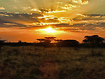 Sunrise over Samburu Game Preserve, Kenya
