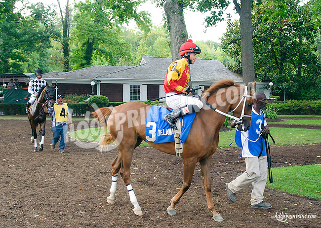 RB Big N Rich before The Buzz Brauninger Arabian Distaff Handicap (grade 1) at Delaware Park on 9/5/15