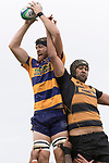 William Furniss takes the ball at lineout time. Premier Counties Power Club Rugby Round 3, Counties Power Game of the Week, between Patumahoe and Bombay, played at Patumahoe on Saturday March 24th 2018. <br /> Photo by Richard Spranger.<br /> <br /> Patumahoe Counties Power Cup Holders won the game 26 - 23 after trailing 7 - 23 at halftime.<br /> Patumahoe 26 - Penalty try, Richard Taupaki, Theodore Solipo, Craig Jones tries; Riley Hohepa 2 conversions. <br /> Bombay 23 - Shaun Muir, Jordan Goldsmith, Liam Daniela, tries; Tim Cossens conversion; Tim Cossens 2 penalties.