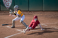 Stanford Softball vs Iowa State, February 16, 2019