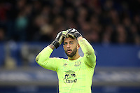 Tim Howard puts his hands to his head as he looks dejected during the Barclays Premier League match between Everton and Swansea City played at Goodison Park, Liverpool
