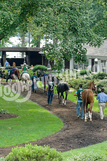 In The Rough before The Forever Together Stakes at Delaware Park on 9/1/12