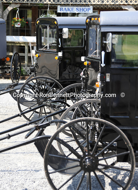 "Buggy's parked in Pennsylvania Dutch Country Amish Country in Lancaster County PA, Pennsylvania Dutch in Amish Country Lancaster County Pennsylvania, Amish, Horse and buggy with amish family on backroads of Pennsylvainia, buggy, amish family, buggy and horse, Commonwealth of Pennsylvania, Commonwealth of Pennsylvania, natives, Northeasterners, Middle Atlantic region, Philadelphia, Keystone State, 1802, Thirteen Colonies, Declaration of Independence, State of Independence, Liberty, Conestoga wagons, Quaker Province, Founding Fathers, 1774, Constitution written, Photography history, Fine art by Ron Bennett Photography.com, Stock Photography, Fine art Photography and Stock Photography by Ronald T. Bennett Photography ©, All rights reserved copyright Ron Bennett Photography.Com, FINE ART and STOCK PHOTOGRAPHY FOR SALE, CLICK ON  ""ADD TO CART"" FOR PRICING,"