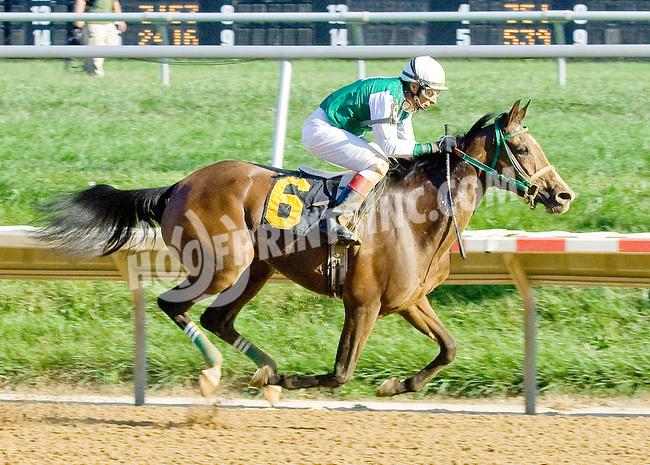 Explosive Heat MHF winning at Delaware Park on 9/12/12