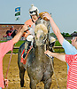 Win Willy clilling out after winning The Cape Henlopen Stakes at Delaware Park on 6/28/12.