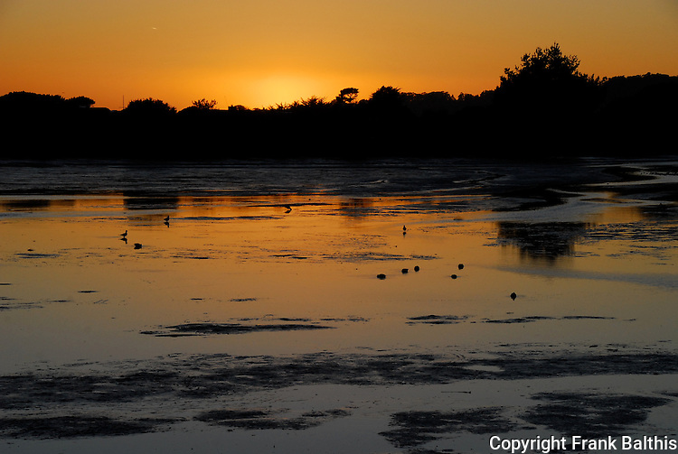 Bolinas Lagoon at sunset and low tide
