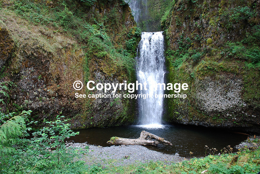 Multnomah Falls, Columbia River Gorge, Oregon, USA, 200809010840..Copyright Image from Victor Patterson, 54 Dorchester Park, Belfast, N Ireland, BT9 6RJ..Tel: +44 28 9066 1296.Mob: +44 7802 353836.Email: victorpatterson@mac.com..IMPORTANT: Please go to www.victorpatterson.com and click on my Terms and Conditions of use.