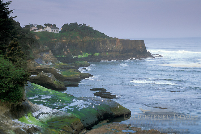 Morning light on houses and homes along rocky coastal bluffs at Depoe Bay, Oregon