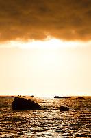 Sunset over Tasman Sea - South Westland, West Coast, New Zealand