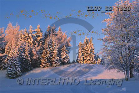 Maira, CHRISTMAS LANDSCAPE, photos(LLPPZS7520,#XL#) Landschaften, Weihnachten, paisajes, Navidad