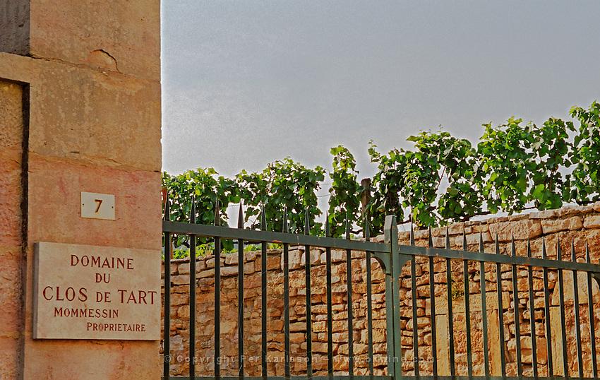 Clos de Tart vineyard and iron gate in Morey Saint Denis belonging to Mommessin, Bourgogne