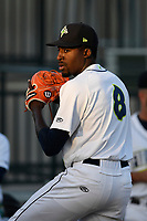 Starting pitcher Tony Dibrell (8) of the Columbia Fireflies warms up before a game against the Charleston RiverDogs in which he set a Fireflies single-season strikeout record of 138 on Tuesday, August 28, 2018, at Spirit Communications Park in Columbia, South Carolina. Columbia won, 11-2. (Tom Priddy/Four Seam Images)