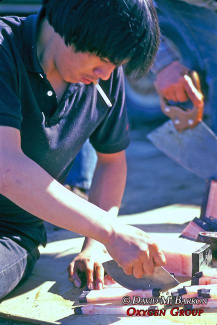 Cutting Muktuk ( Whale Blubber )