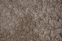 MEXICALI, MEXICO - March 12 . A detailed view of the cracked ground due to lack of water on March 12, 2019 in Mexicali, Mexico.<br /> The rivers usually end in the sea, the Colorado dies in a border. Its the only case like this in the world. There is less water in the Colorado River, hence less water in crops and areas of northern Mexico.  <br /> (Photo by Luis Boza/VIEWpress)