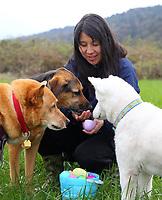 Easter B'egg Hunt April 2017