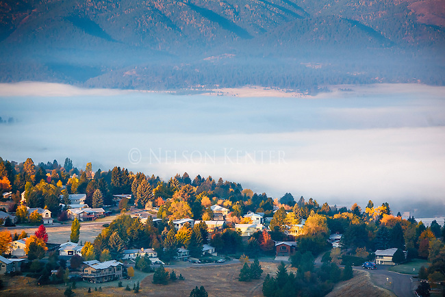Fall colors of the trees on hills south of Missoula as the sun rises. The valley filled with fog.