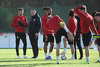 Ryan Giggs Manager of Wales speaks to Paul Dummett during the Wales Training Session at The Vale Resort in Cardiff, Wales, UK. Monday 12 November 2018