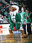 The North Texas Mean Green mascot, Scrappy, shoots a basket during the NCAA  basketball game between the South Alabama Jaguars and the University of North Texas Mean Green at the North Texas Coliseum,the Super Pit, in Denton, Texas. UNT defeated South Alabama 82 to 79...